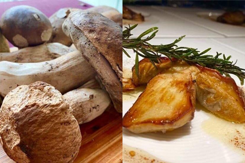 topic : イタリア産フレッシュポルチーニ茸の厚切りステーキ